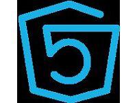 Front End / Wordpress Developer