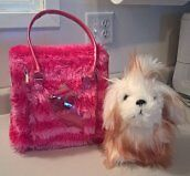Pucci Pups Maltese with Trendy Carrier