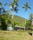 Clifton beach cairns lowset  house and land. Almost 1 hectare. Clifton Beach Cairns City Preview