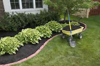 BRADLEY'S LANDSCAPING -Summer Clean-up Special $99+, lawn care
