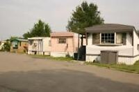 **** MOBILE HOMES FOR $10,000 ****