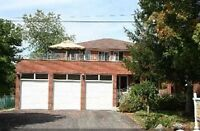 House for Rent in Richmond Hill - Private, 4 Bedroom, Huge Yard