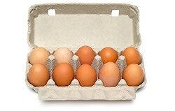 home-grown chicken eggs! Forestville Warringah Area Preview