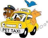 Transport animalier