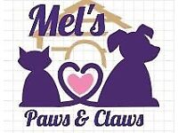 Mel's Paws & Claws. Dog Walker / Pet Sitter