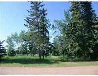 vacant residential double lots