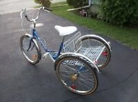 NOCO ADULT TRICYCLE 6 SPEED