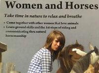 Serenity Equestrian horse riding lesson