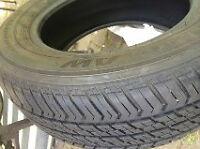 Motomaster All Season Tires