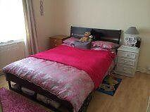 Spacious double room to rent in friendly professional house
