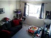 flat swap from edinburgh to anywhere in belfast or close ballygomartin topof shankill road