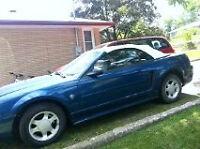 1999 35th anniversary convertible mustang