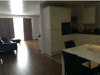 Lovely 1 Bedroom ( shared flat) to rent in Liverpool City Centre- L1