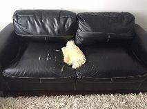 tow sofa  black