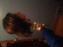 HAIR STYLING HEAD $35 EACH OR BOTH FOR $65 Windsor Region Ontario image 4