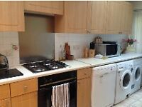 Lovely 2 bedroom Garden Flat in Highbury