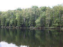 Terrain a Vendre  Lac Caron
