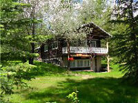 Log House on acreage for sale very private
