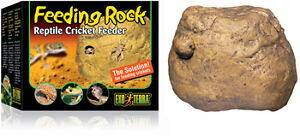 Exo Terra Feeding Rock - Reptile Cricket Feeder - Aussie Seller