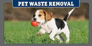 Pets Waste Removal Service