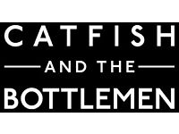 catfish and the bottlemen tickets at Liverpool echo 30/6/17 x 2