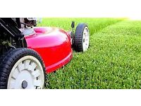 Grass Cutting from £10
