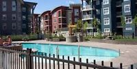 Verve Living,beautiful modern 2 bed 2 bath condo