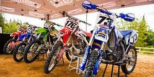 Wanting to buy crf450 or cr250