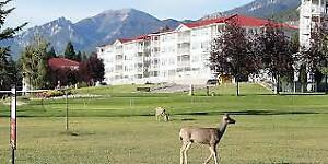 1 Week Resort Rental at Fairmont Hot Springs BC