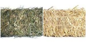 Hay & Straw For Sale-The Kakabeka Depot #628-0652