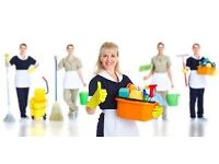 Domestic Cleaners - 6 Cleaners Required ASAP