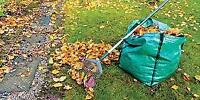 grass cutting spring cleaning service free estimates