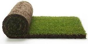 SOD - SOD -Farm Fresh Cut and same day delivered- SOD-SOD...