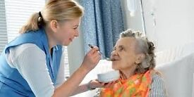 Professional Caring Female Needed For Home Care