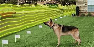 D&H INGROUND DOG FENCING-WIRELESS AND INGROUND