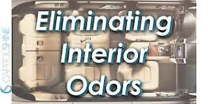 $99 · We permanently remove odors and neutralize mold, bacteria