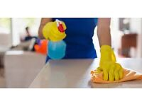 Experienced cleaner and housekeeper