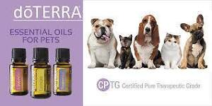doTERRA Essential Oils for Your Pets
