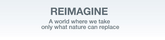 Patagonia Common Threads Pledge to Reimagine