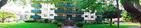 *COOK STREET VILLAGE AREA*  1 BR APT WITH BALCONY   AVAIL. March