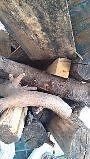 reste de bois de foyer