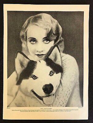 Original 1934 Dog Print / Bookplate - ESKIMO DOG, with actress Carol Lombard