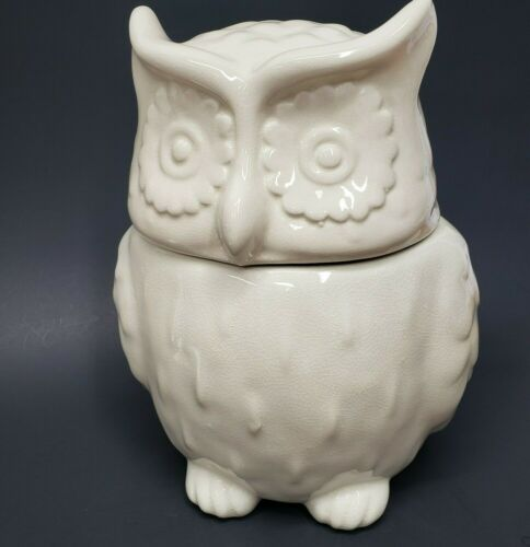 Threshold OWL Stoneware Cookie Jar Crackle/ Antique look Ceramic Creamy White