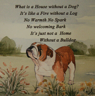 BULLDOG ENGLISH DOG HARDBOARD PLAQUE TILE WATERCOLOUR PRINT SANDRA COEN ARTIST