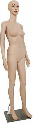 Female Mannequin Torso Dress Form Mannequin Body 69 Inches Adjustable Mannequin