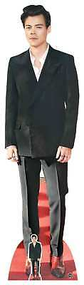 Harry Styles Red Shoes Lifesize & Mini Cardboard Cutout / Standee / Standup