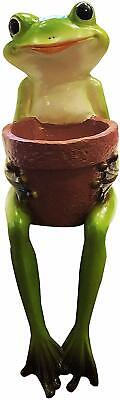 Cute Resin Sitting Frog Holding a Garden Pot for Indoor and Outdoor use Green Frog Pot