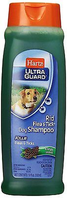 Shampoo For Dogs Flea And Tick 18 oz Puppies Dog Bath Best Puppy Fresh Scent