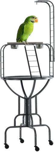 """67"""" Elegant Design Metal Pan & Long Neck Ladder Toy Hook Parrot Bird Stand 274"""