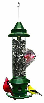 Brome Squirrel Buster Plus Wild Bird Feeder with Cardinal Perch Ring 1024